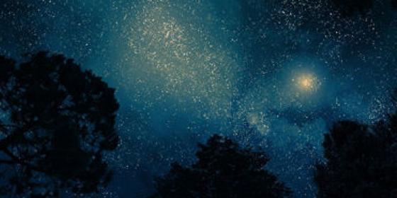Nos croisières nocturnes